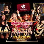 Microgaming Gambling Enterprise Program
